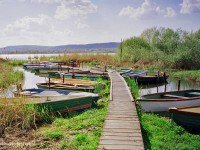 Boats on Lake Balaton in the summer