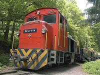 The prettiest forest railways in Hungary